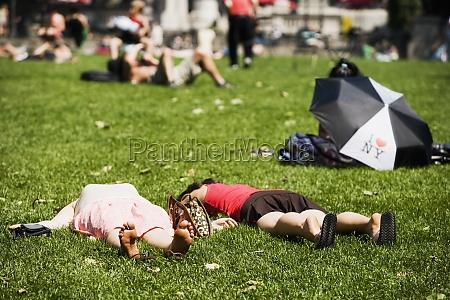 zwei, personen, liegen, im, park - 29435991