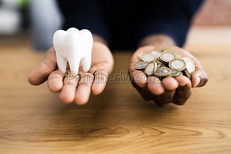 zahnzahnimplantat kosten
