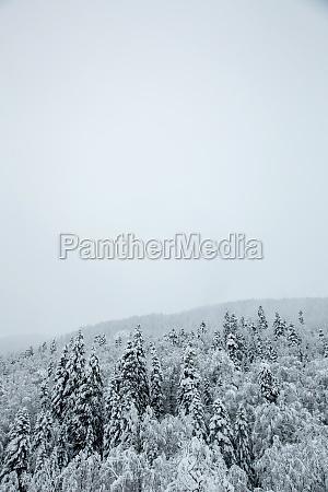 hochland mit schnee und eis im