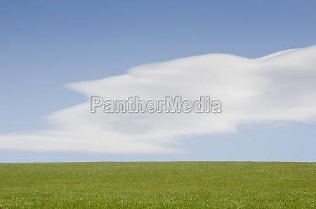 gruene ebene und himmel