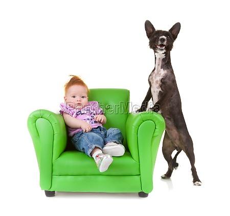 kleinkind mit einem kleinen schwarzen hund