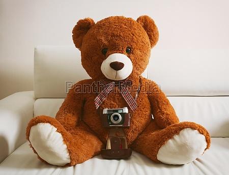 teddybaer mit vintage 35mm kamera