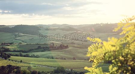 typische landschaft der toskanischen huegel mit