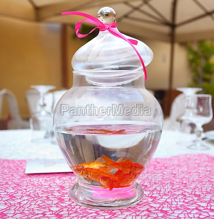 goldfisch in ampulle als herzstueck