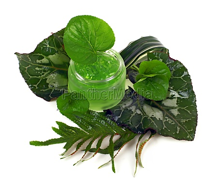 kosmetikcreme im gruenen glas