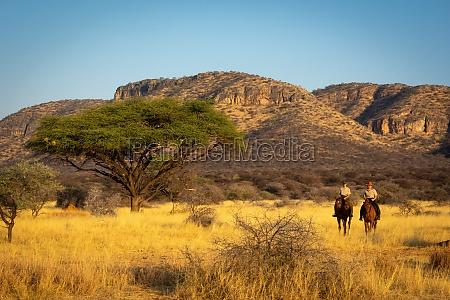 zwei frauen fahren durch savanne in