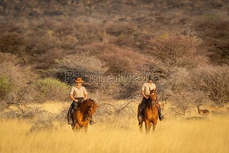 zwei reiterinnen die von impala beobachtet