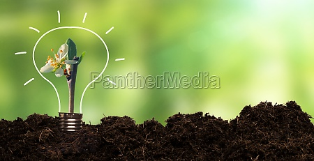 umweltfreundliches und nachhaltiges umweltkonzept