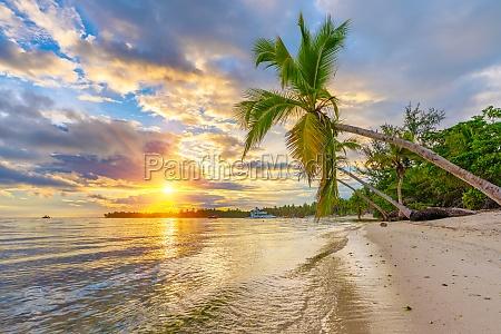 sonnenaufgang ueber tropischem strand