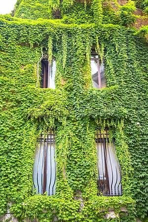 grüne, immobilien - 29705891