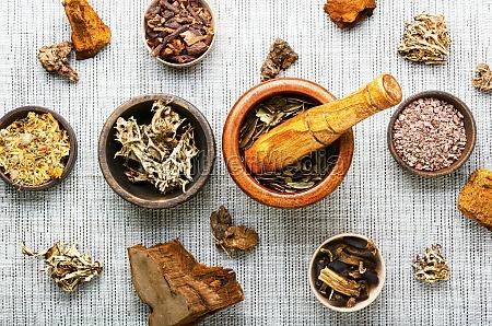 heilkraeuter in der alternativmedizin