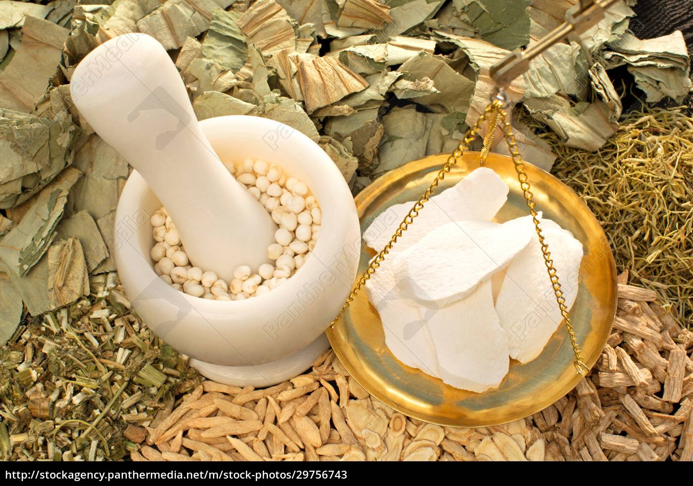 astragalus, scale, measurement, yam, choice, chinese - 29756743