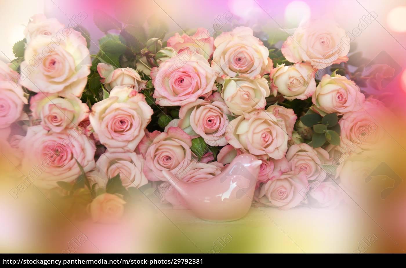 rosa, rosen, mütter, tag, stillleben - 29792381