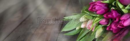 lila, tulpen, auf, dunklem, rustikalem, holz - 29805284