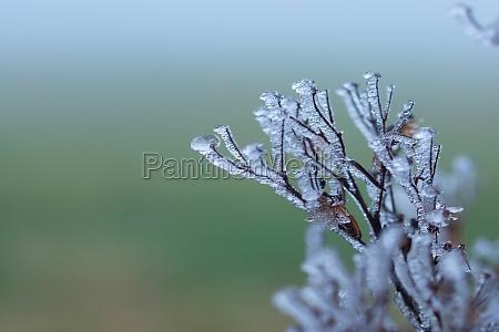 blick auf einen verschneiten winter in