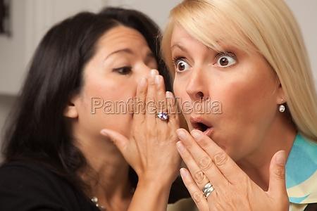 friends, whispering, secrets - 29829855