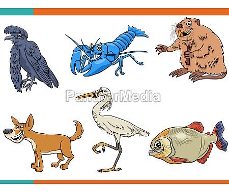 cartoon lustige wilde tiere comic figuren