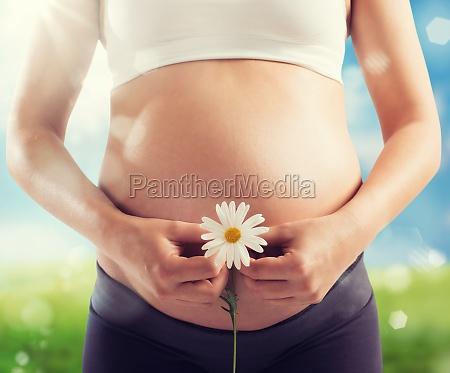 schwangerschaftgeburt des lebens
