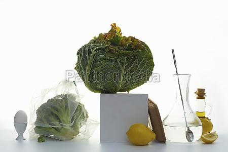 stillleben mit weisskohl brokkoli und zitronen
