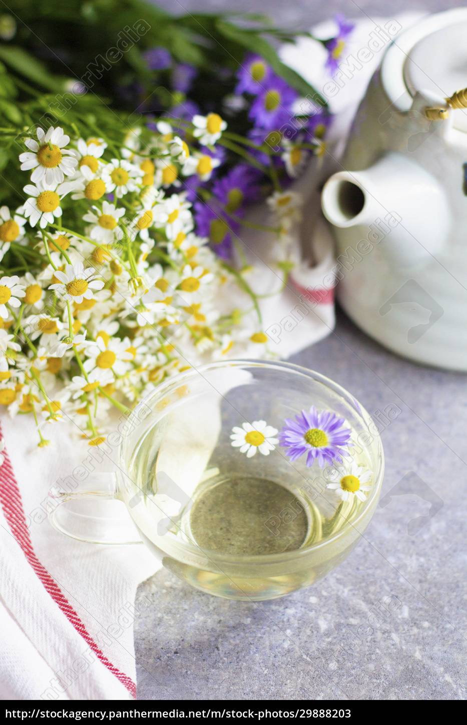 chamomile, tea, in, a, glass, cup - 29888203