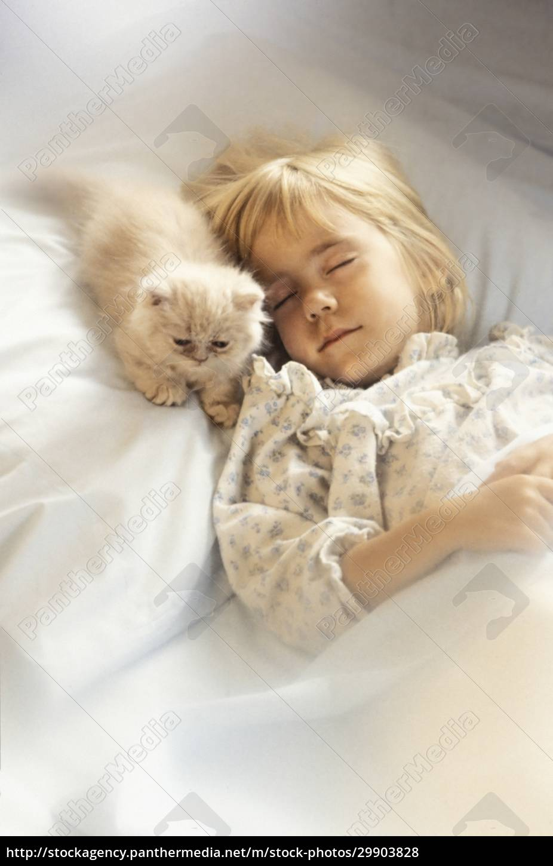 girl, (6-7), with, kitten, sleeping, in - 29903828