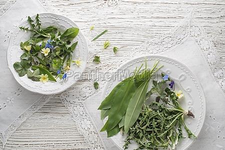 gesunde, frühlingspflanzen, lebensmittelzutaten - 29907372