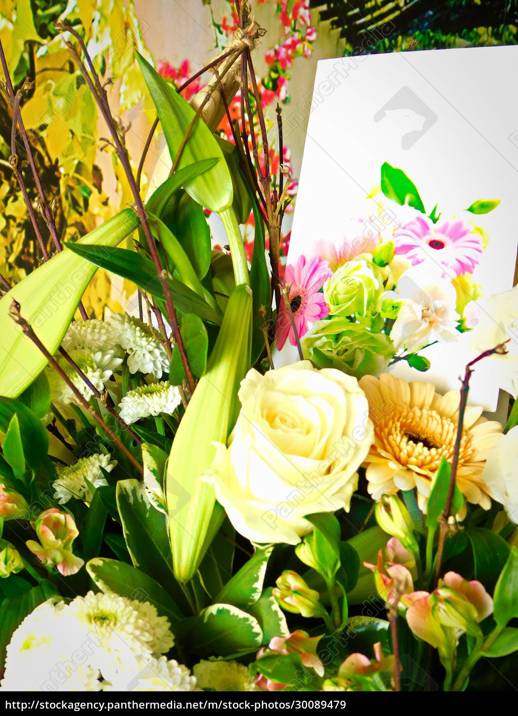 , the, bouquet, as, a, sign - 30089479