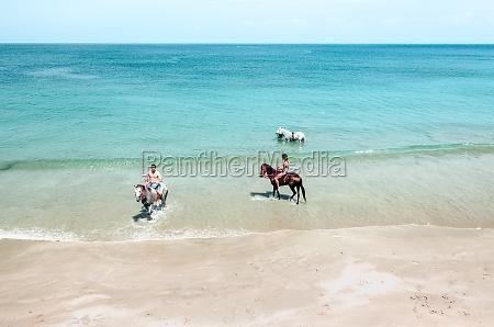 luftaufnahme von menschen die pferde entlang