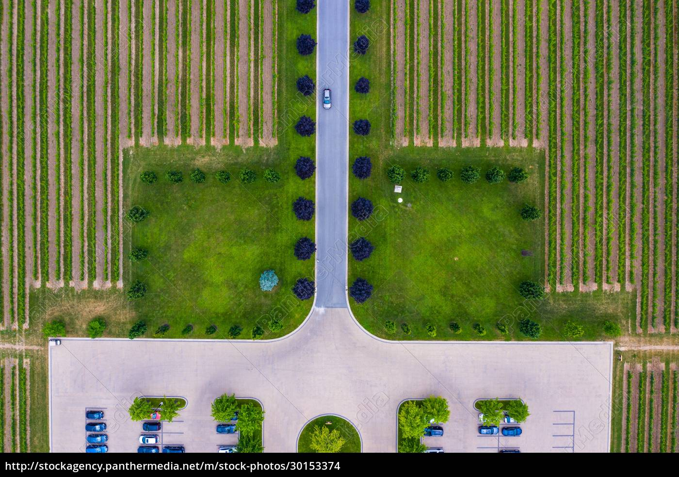 aerial, view, of, vineyard, and, the - 30153374