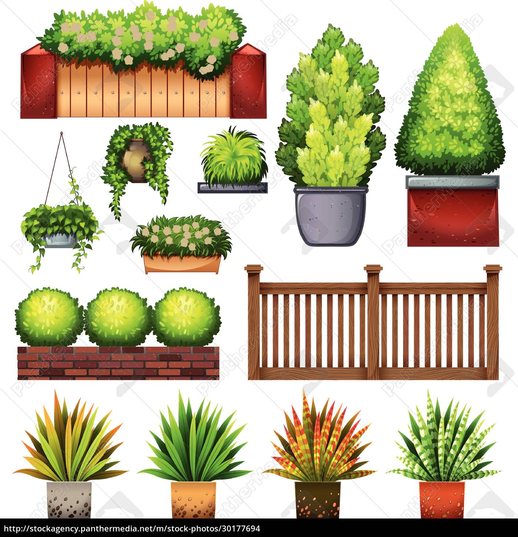set, of, different, plants - 30177694