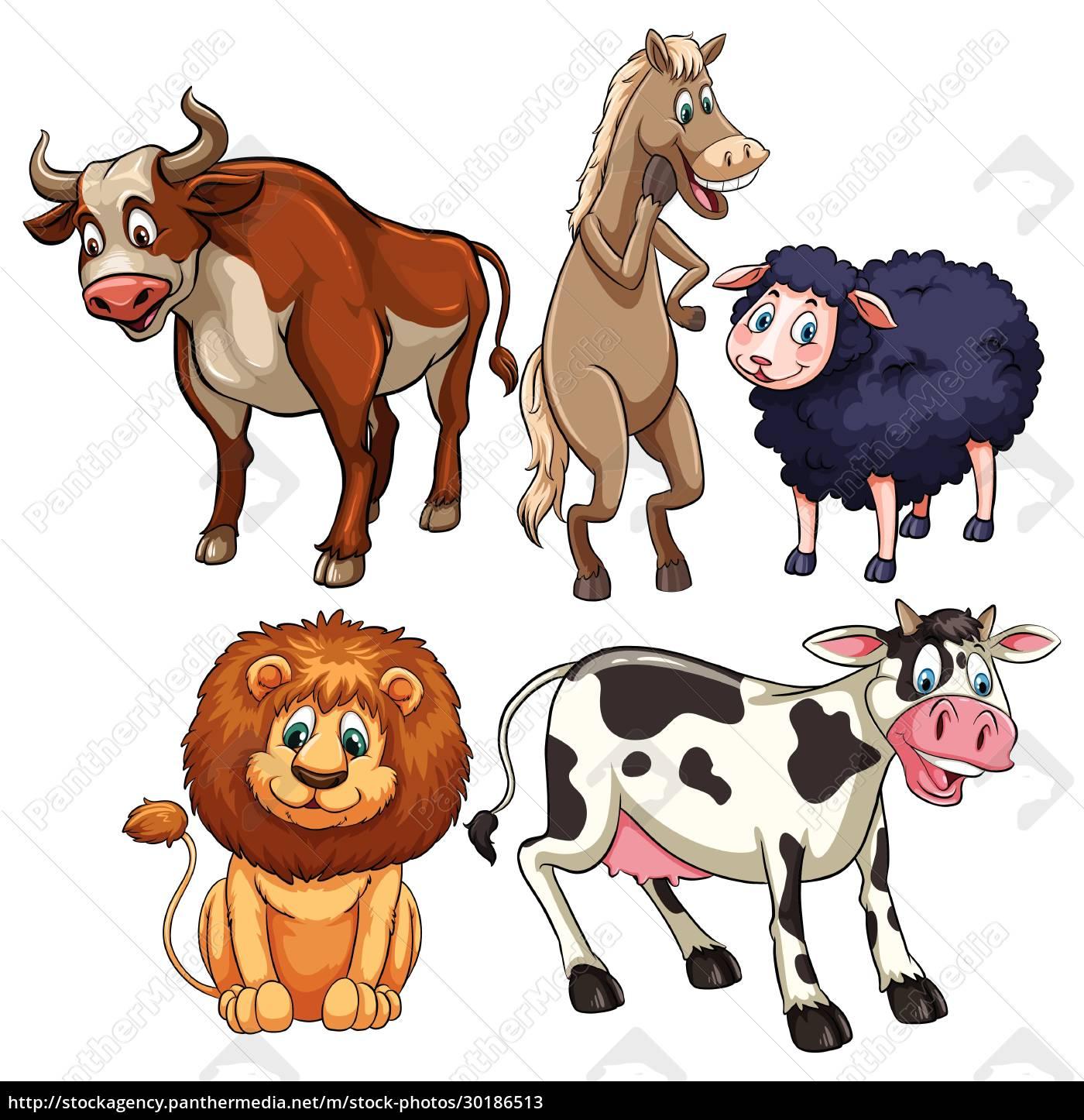 animals - 30186513
