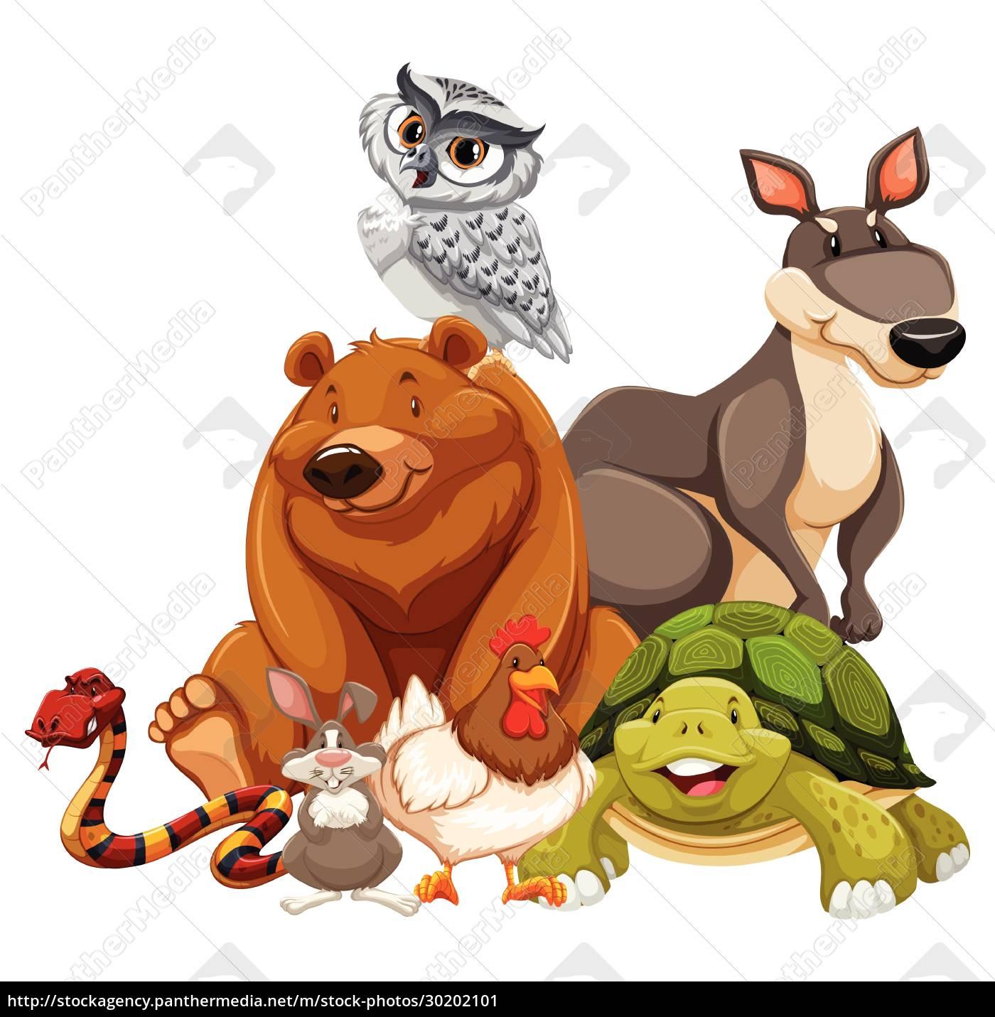 animals - 30202101
