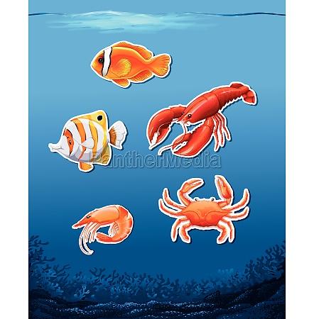 animals, in, underwater, scene - 30205058