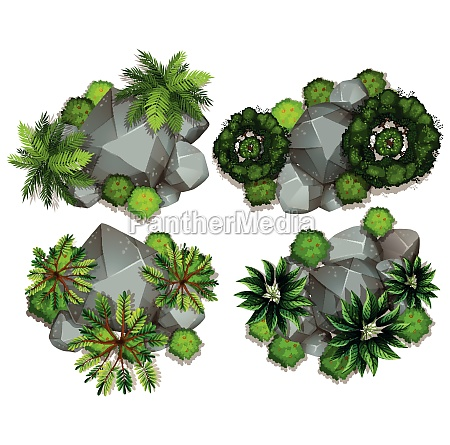 aerial, view, of, plants, and, rocks - 30250263