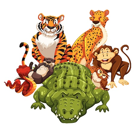 animals - 30250322