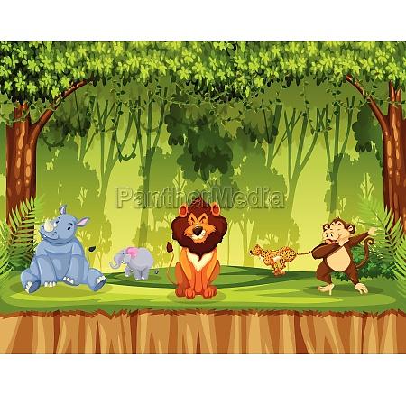 animals, in, jungle, scene - 30253278