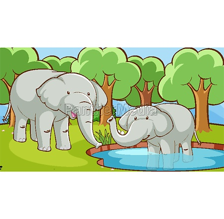 scene, with, elephants, in, forest - 30363638