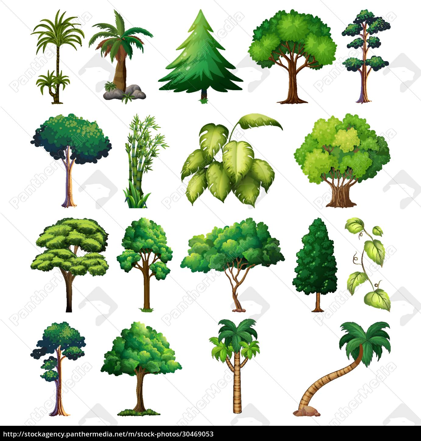 set, of, variety, plants, and, trees - 30469053