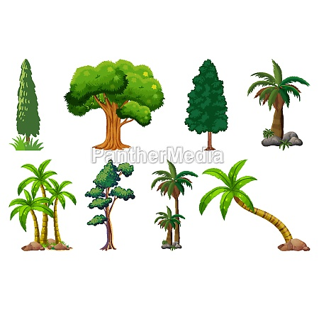 set, of, variety, plants, and, trees - 30472347
