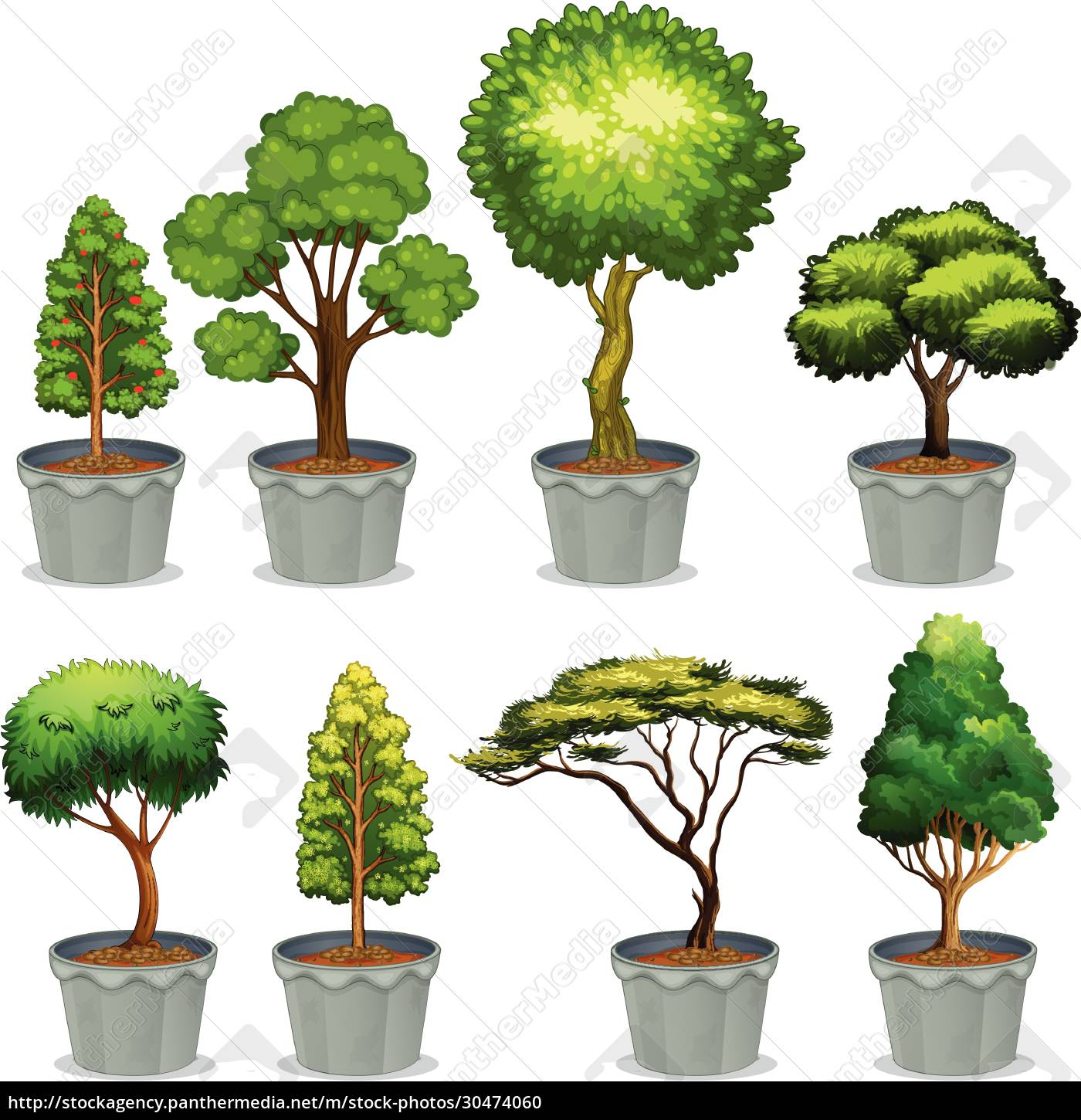 potted, plants - 30474060