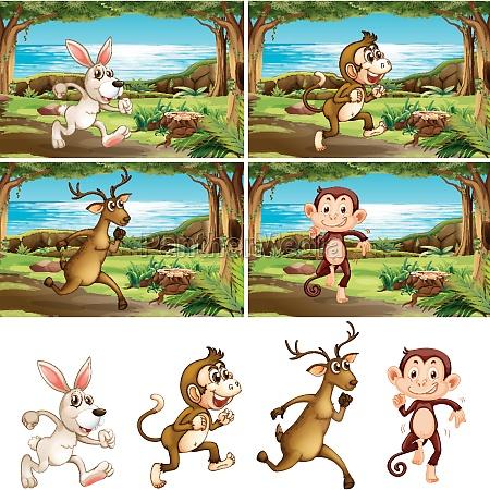 set, of, animals, running - 30474892