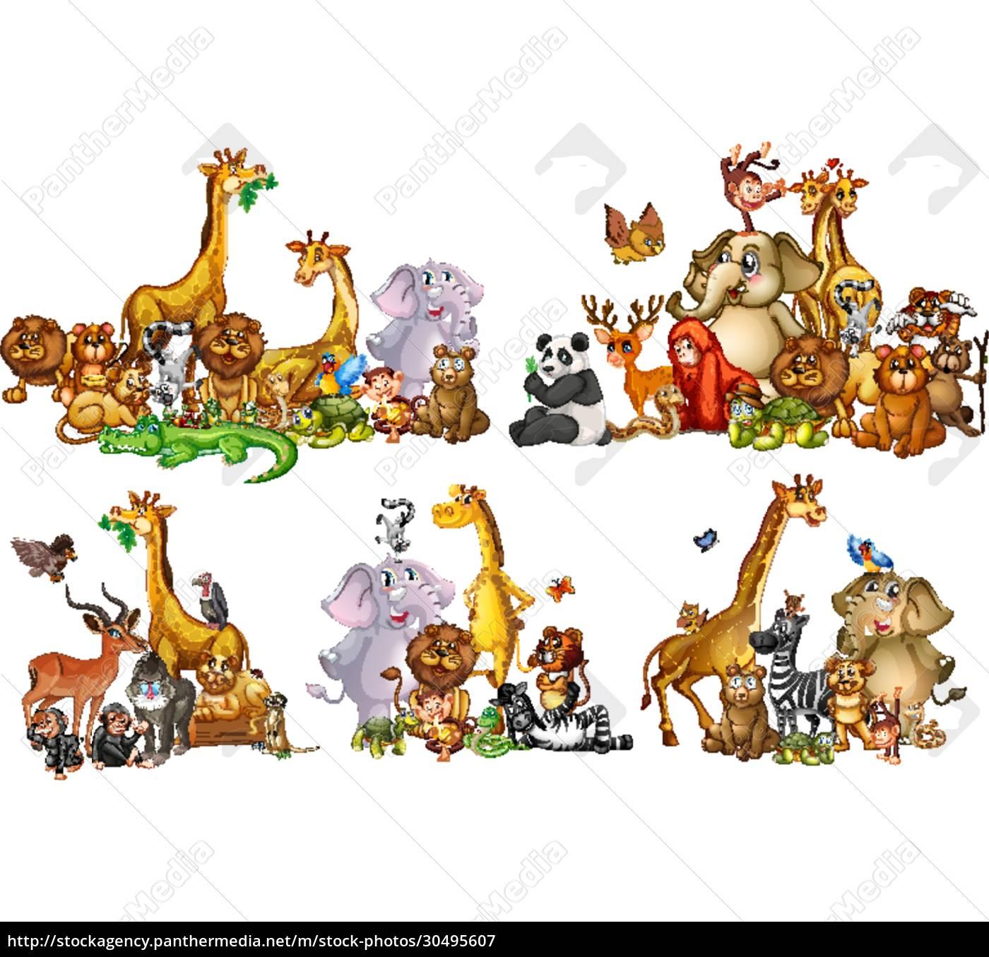 set, von, wildtieren, in, gruppen, auf - 30495607