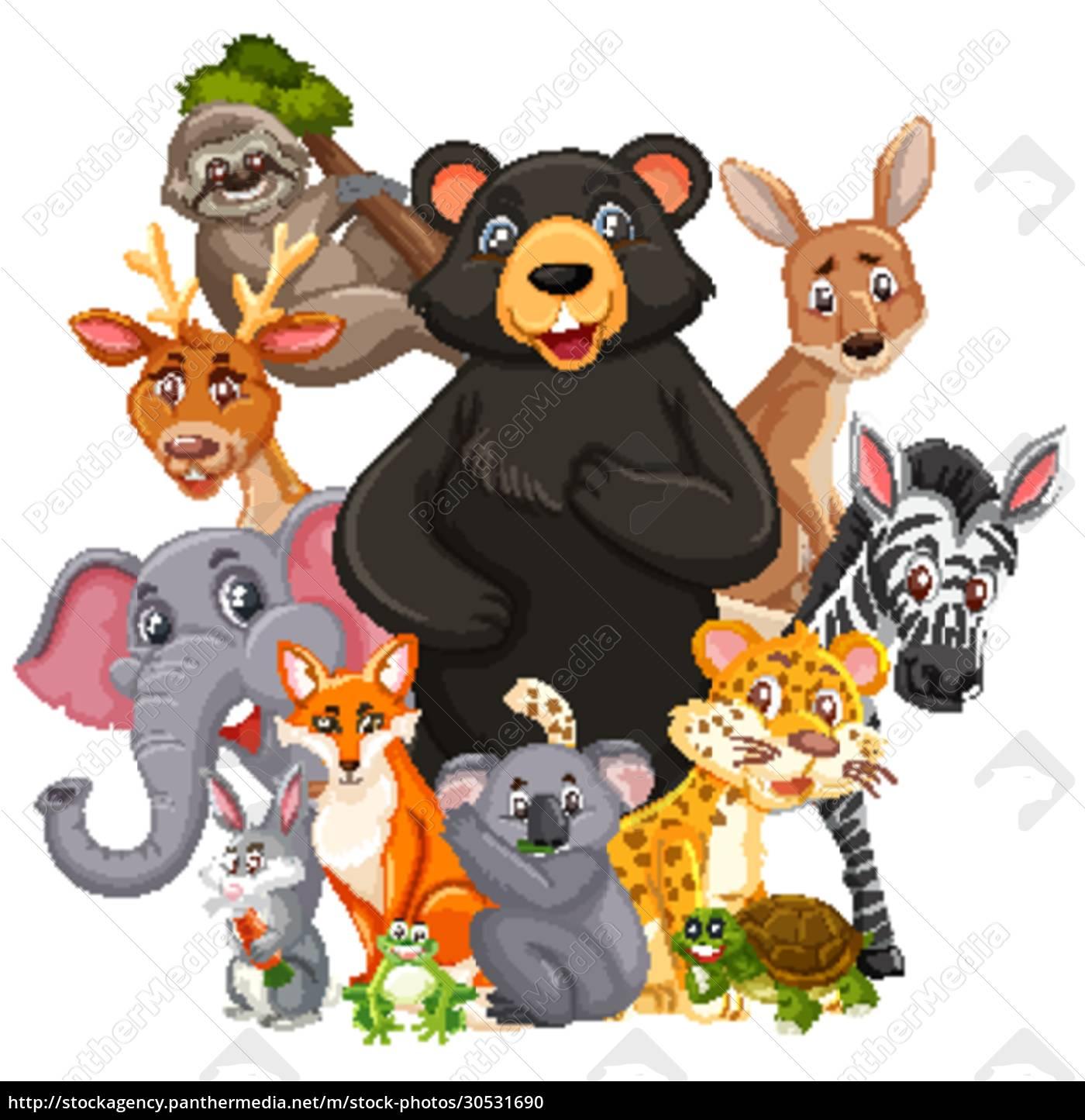 different, types, of, wild, animals, on - 30531690