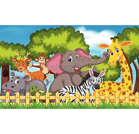 set, of, wild, animals - 30547170