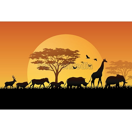 silhouette, animals, on, savannas, illustration - 30585831