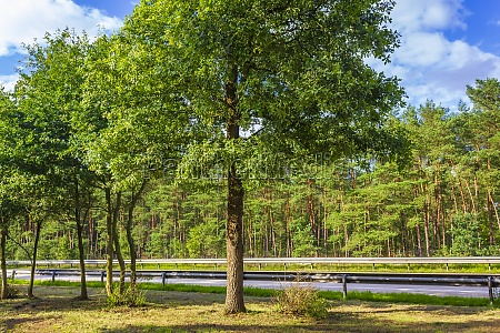 nature, and, landscape, on, the, highway - 30699618
