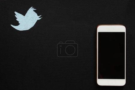 blau hintergrund schwarz vogel lackiert geraet