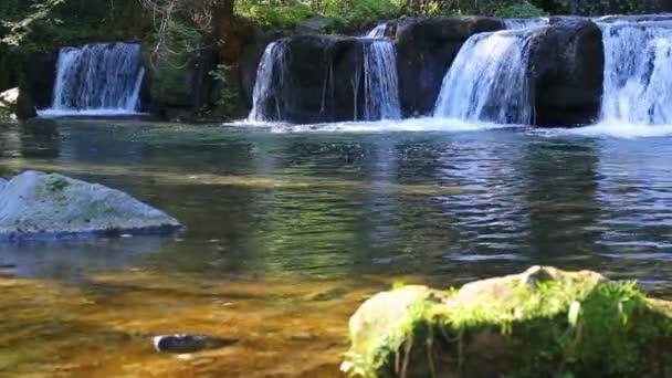 schwimmbad gruen stein schoen natur frisch