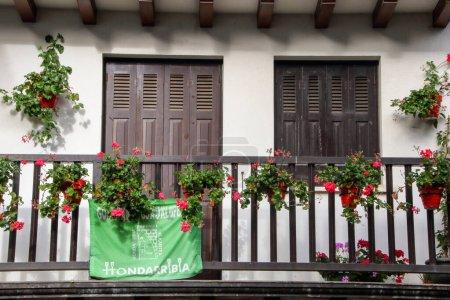 Farbe, reise, draußen, Pflanzen, blume, holz- - B317144668