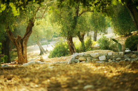 Hintergrund, Aussicht, Design, Kunst, im Freien, Natur - B10677020